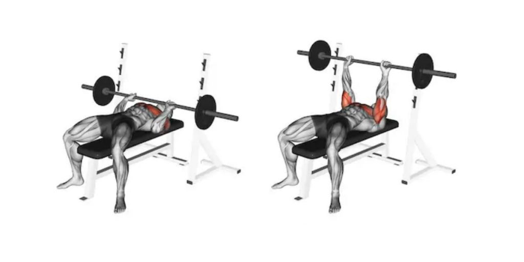 bench press exercise instruction